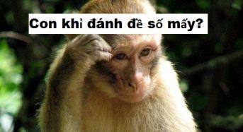 Con khỉ số mấy, nằm mơ thấy khỉ đánh đề con gì?