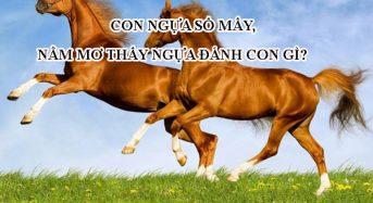 Con ngựa số mấy, nằm mơ thấy ngựa đánh con gì?