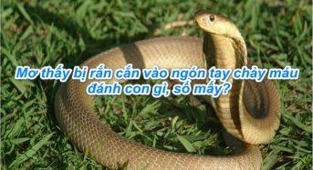 Nằm mơ thấy bị rắn cắn vào ngón tay chảy máu đánh con gì, số mấy, có điềm gì?